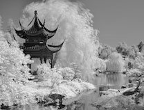 Photo of Chinese Garden