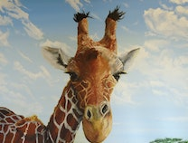 Photo of Love the Giraffe